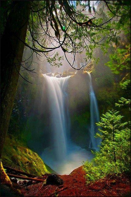 Waterfall photograph at Falls Creek Falls, Washington gorgeous! #godspaintbrush #nature #photography ##waterfall