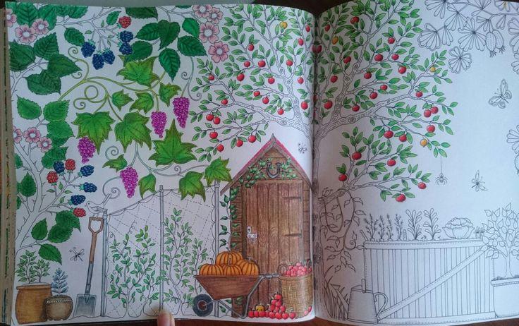 Progress, Johanna Basford Secret Garden Esrarengiz bahçe boyama kitabı klube kabak üzüm prismacolor