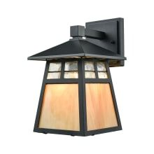 1 Light LED Outdoor Lantern Wall Sconce with Clear and Copper Glass Shades from the Cottage Collection