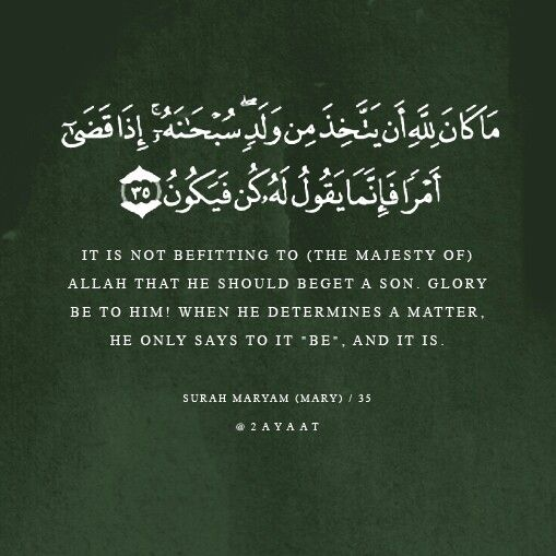 surah maryam (mary) | Islamic Quotes | Pinterest Quran Quotes About Peace