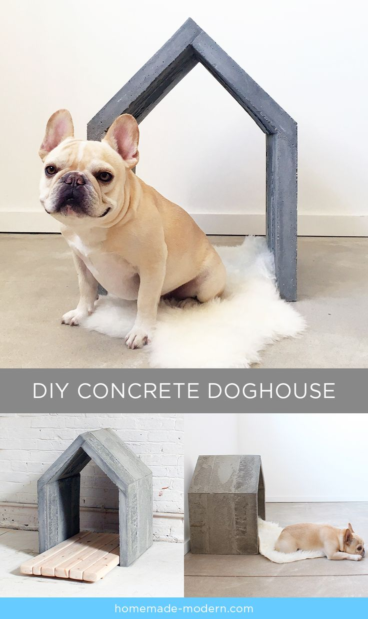 HomeMade Modern DIY Concrete Doghouse Postcard