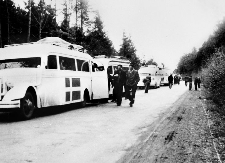 Bernadotte-aktionens hvide busser i Tyskland med befriede danske og norske fanger fra koncentrationslejre på vej til Danmark i foråret 1945  Tidsperiode og årstal Datering:Mellem Marts 1945 og April 1945 - See more at: http://samlinger.natmus.dk/FHM/17584#sthash.03j1jRv5.dpuf