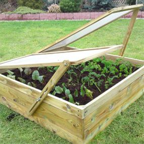 17 best images about vegetable patch on pinterest for Vegetable patch ideas