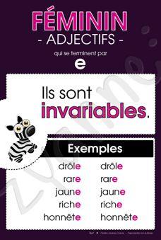 Féminin - Adjectifs en « e »