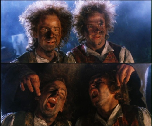 """Meriadoc Brandybuck and Peregrin Took. I might have known.""  Merry and Pip get into #Gandalf's fireworks.   #LOTR"