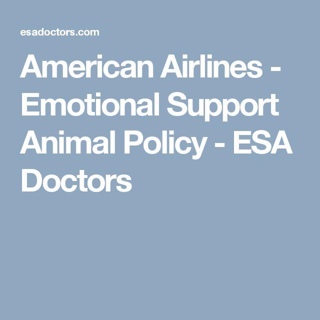 Best 25+ Emotional support animal ideas on Pinterest | Service dog ...