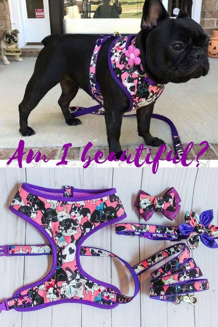 Pink Girl French bulldog harness collar leash set