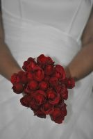 Bride: Natasha Temmers Photographer: GS Freelance Photography