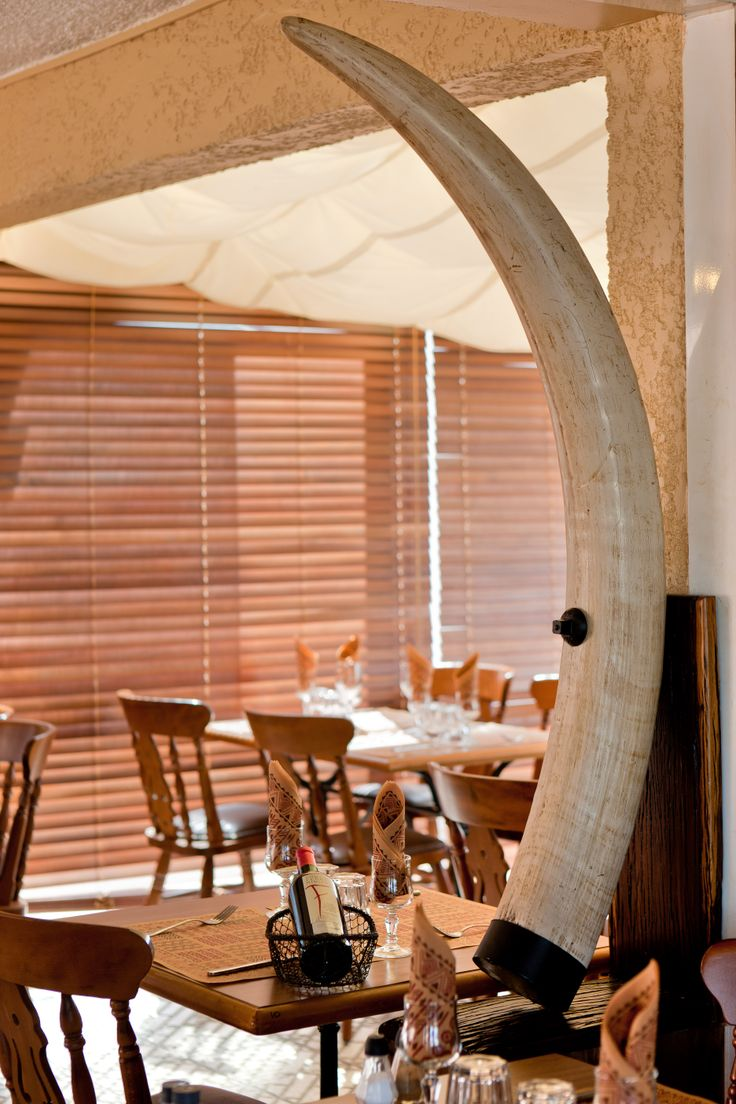 """Découvrez notre restaurant le """"Safari Joe"""", dans un cadre africain et à l'ombre d'un patio arboré, vous dégusterez grillades et spécialités Sud Africaines. Ambiance musicale et exotique pour un dépaysement total..."""