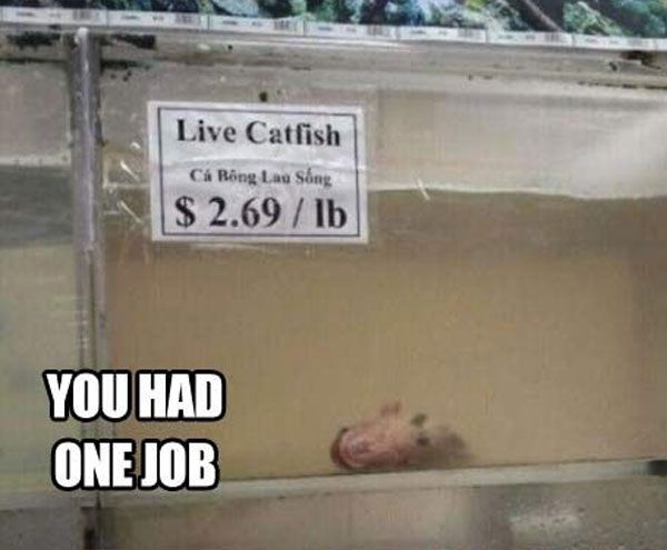 Funny Memes Job : 93 best you had one job to do . images on pinterest funny images