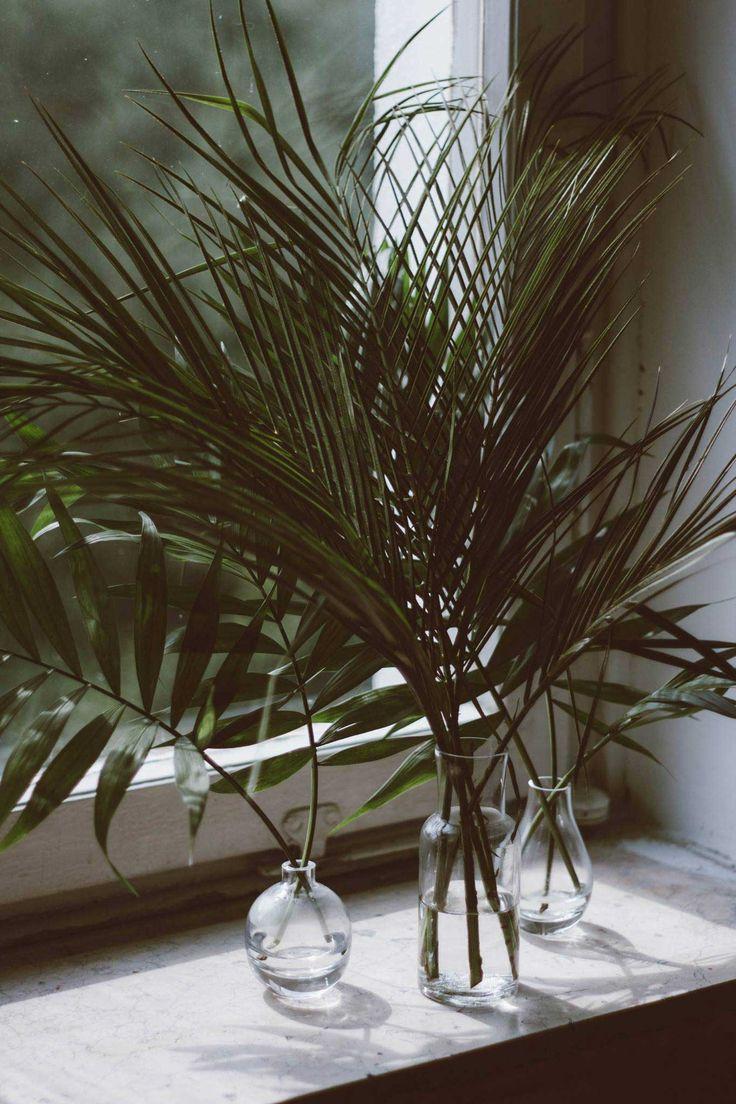 Einzelne Blätter lassen sich auch in kleine Vasen stellen. #pflanzenfreude