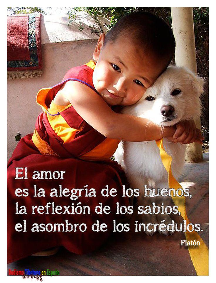 https://www.facebook.com/pages/Budismo-Tibetano-en-Espa%C3%B1a/124077470976685?ref=tn_tnmn Increíble la foto y la frase!!!