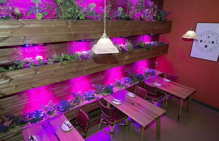 #HealthyFood @4amb5 #Vegetal, #restaurante #Barcelona