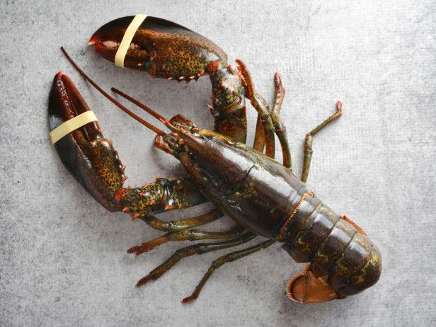 How to Cook Lobster - Buy Fresh