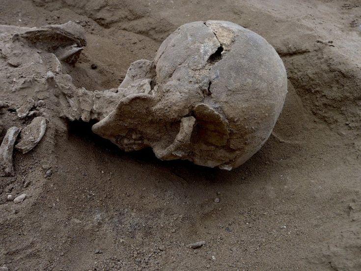 Circa diecimila anni fa un piccolo gruppo di uomini, donne e bambini fu catturato da un clan rivale, legato e massacrato a colpi di frecce e di pietre. I loro