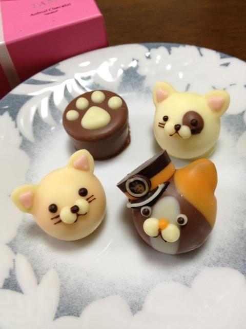 日本人のおやつ♫(^ω^) Japanese Sweets. Animal Chocolates at Goncharoff (Kobe, Japan) これはゴンチャロフが毎年2月のイベント限定で販売しているアニマルショコラです。これは限定のたま駅長さんヴァージョンのニャンコチョコです。