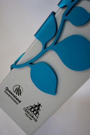 queensland mental health awards - custom trophy award