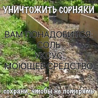 http://ok.ru/feed