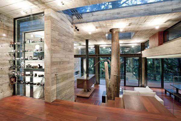 Casa Corallo by PAZ Arquitectura. Adore the camera collection display.