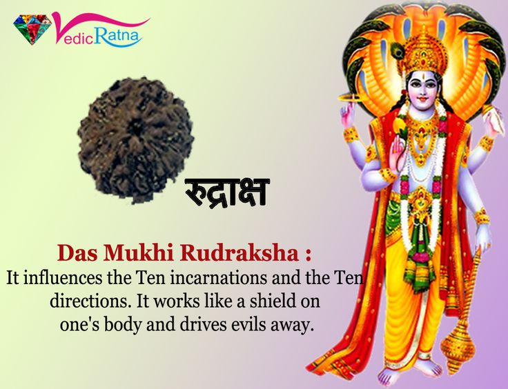 10 Mukhi Rudraksha gives Name, Fame, Health and Prosperity by removing malefic effects of all Nine planets.