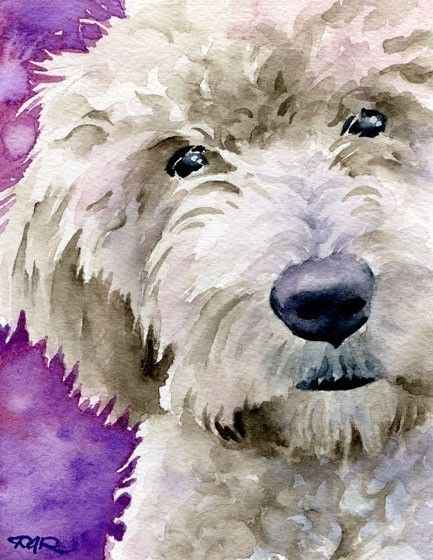 GOLDENDOODLE Dog Watercolor Signed Fine Art Print by Artist DJ Rogers on Etsy
