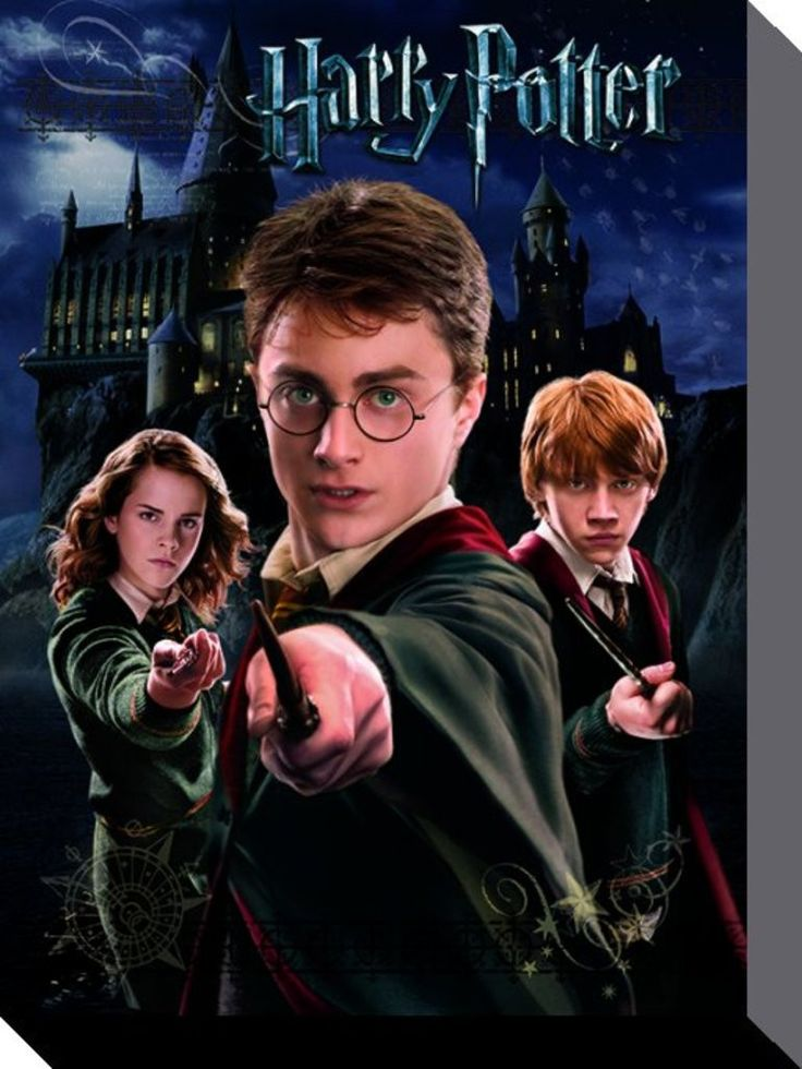 Harry Potter - Harry Ron Hermione - Official Canvas Print. Official Merchandise. FREE SHIPPING