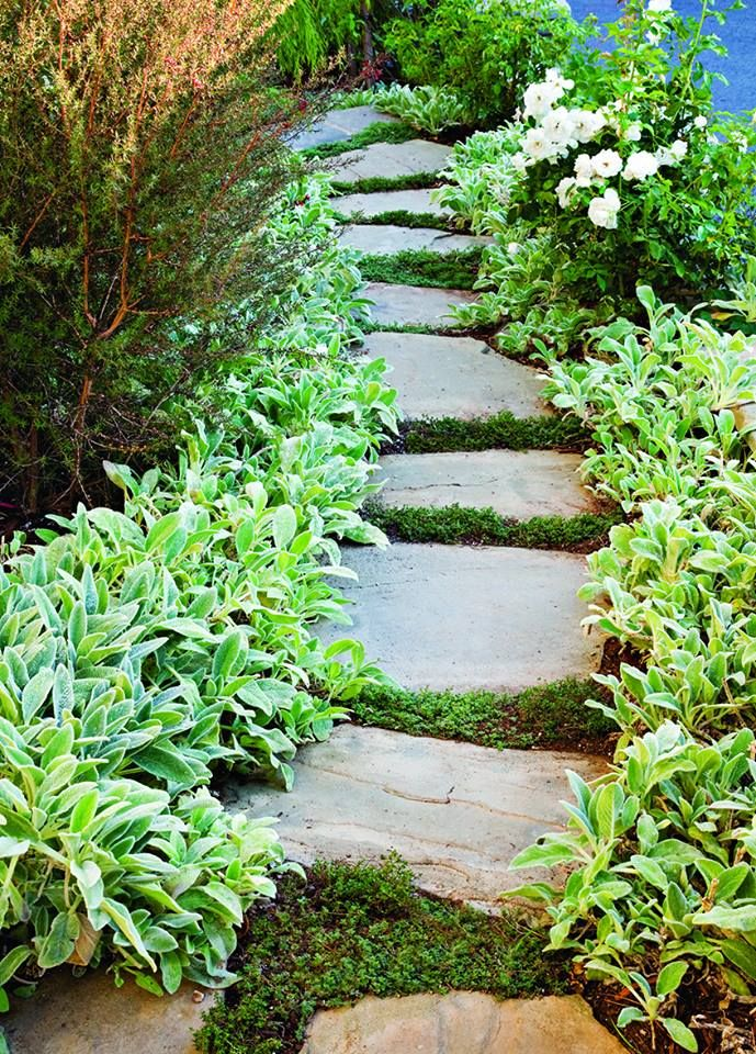 This is the kind of path I would love from the garage-side gate to my special place in the back yard!  So pretty and peaceful.