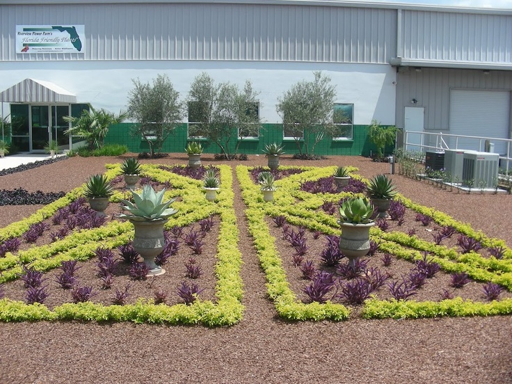 Garden Centre: 17 Best Images About Crooked Palm Ranch On Pinterest