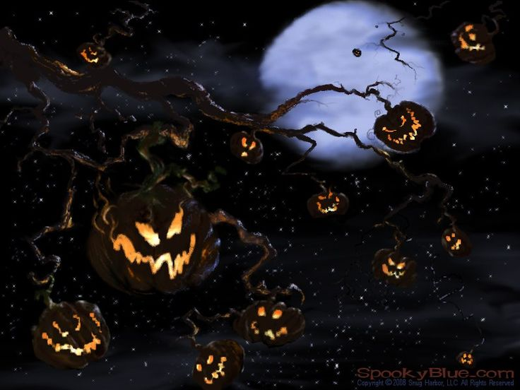 79 best images about bing halloween on pinterest free for Creepy trees for halloween