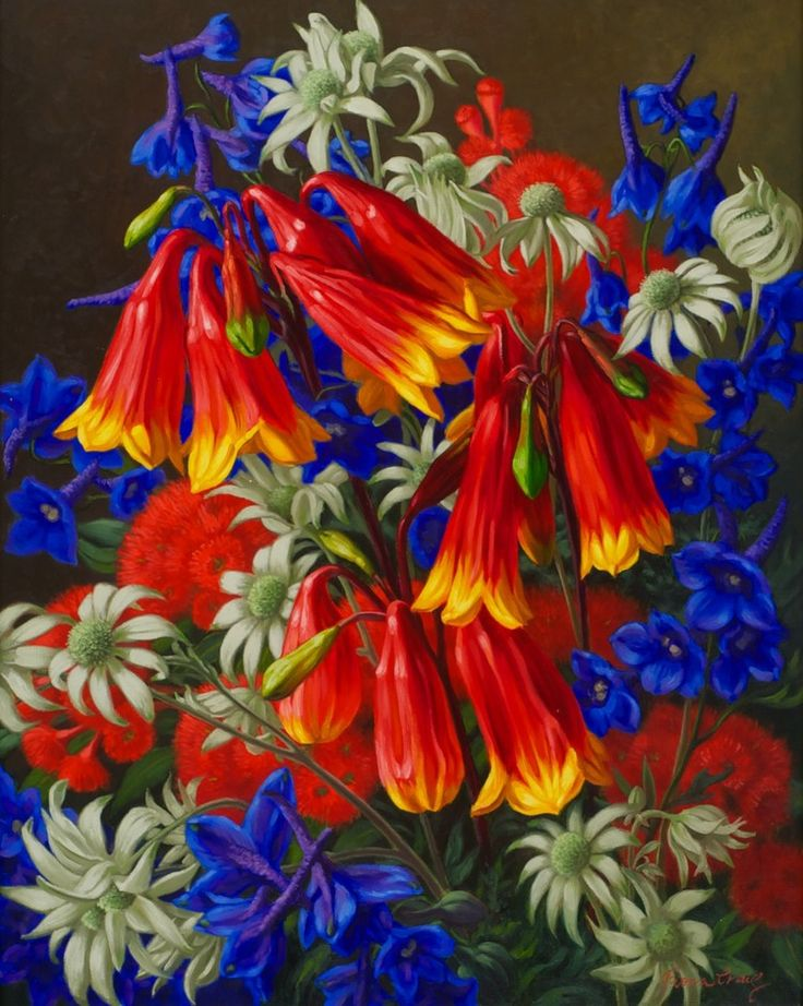 Fiona Craig 'Blandfordia and Flannel Flowers' 76cm x 61cm#13837