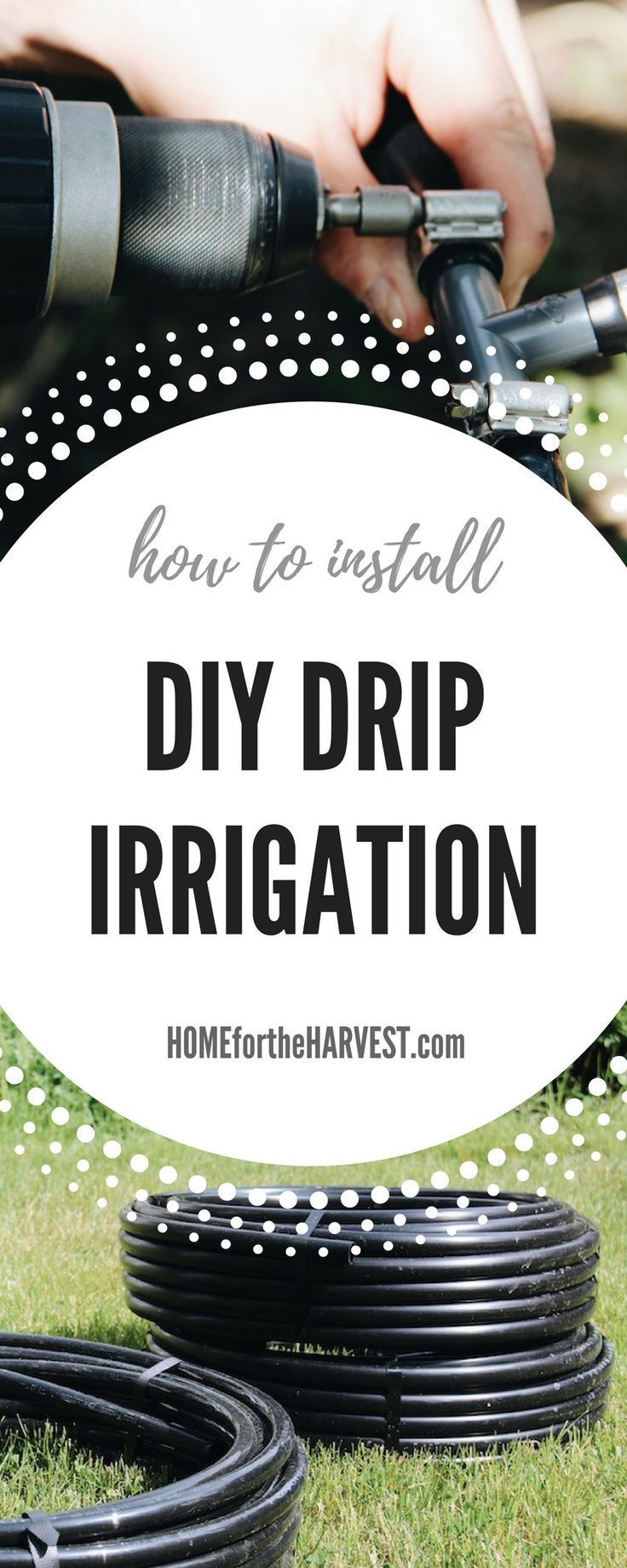 How to Install DIY Drip Irrigation - Tutorial and Free Printable | Home for the Harvest #savewater #savetime #dripirrigation #irrigation #diyirrigation #gardening #organicgardening #gardeningtutorial #yardwork #gardenproject