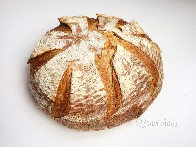 Na ceste za kváskovým chlebom (1) - Ako získať kvások