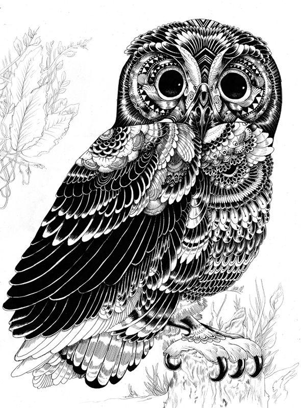 Animal illustrations and shirt designs by Iain Macarthur, via Behance