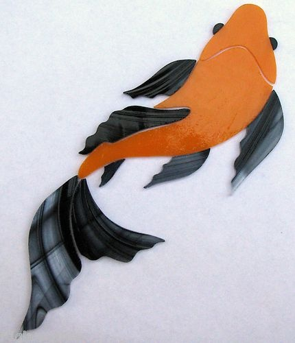 17 best images about stained glass fish ponds on for Baby butterfly koi