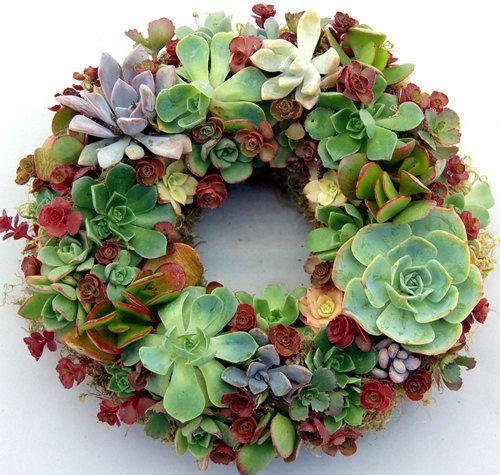 "Succulent Wreath Enchanted Fairy 9"""