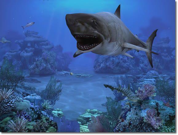 Prolific Publishing, Inc. :: Screen Savers :: Sharks Terrors of the Deep 2.0 - Windows
