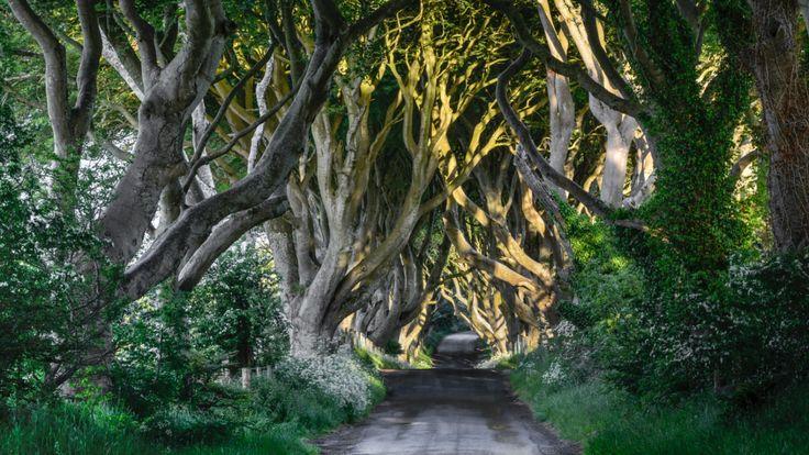 """Ci sono luoghi che puoi trovare su qualsiasi """"lista di cose da vedere"""" in Irlanda. Ma solo qui puoi scoprire le curiosità nascoste di Irlanda...."""