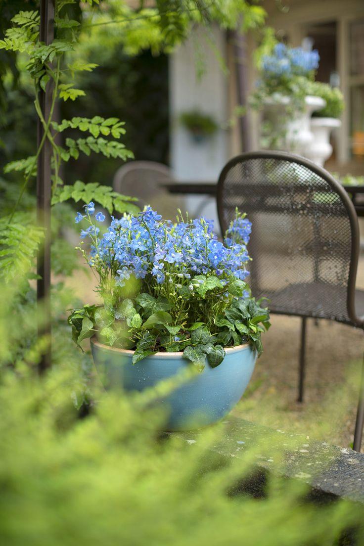 52 best inspirations pour votre jardin naturel printemps for Jardin printemps 2015