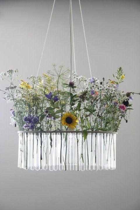 Maria S C single chandelier