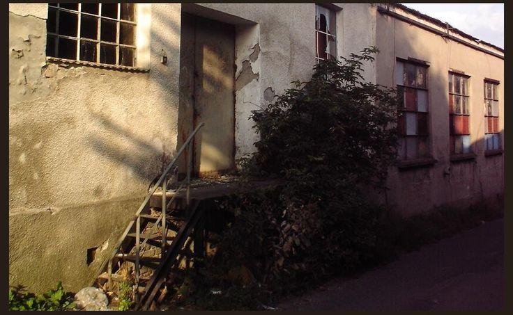 Tylne wejście | zoom | digart.pl