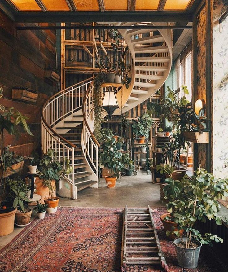 spiral staircase & potted plants  follow my insta @artfromva