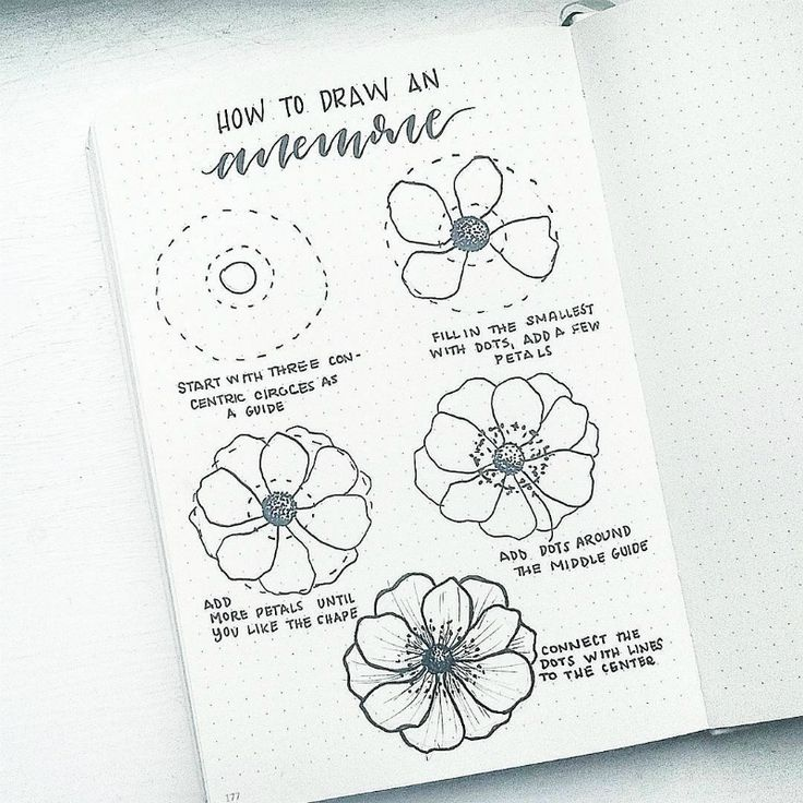 How To Improve at Drawing Florals! – bullet journal 2019