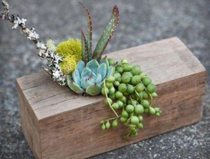 les 25 meilleures id es de la cat gorie pots de plantes d 39 int rieur sur pinterest plantes d. Black Bedroom Furniture Sets. Home Design Ideas