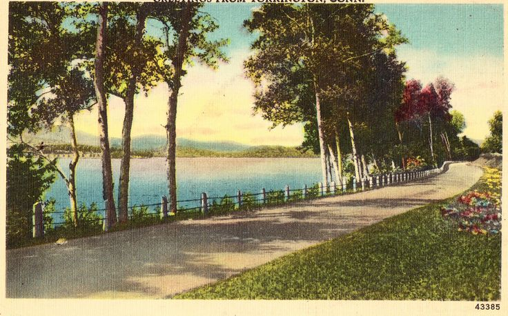 Linen Postcard - Greetings from Torrington,Connecticut