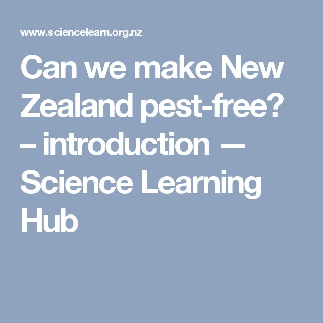 Can we make New Zealand pest-free? – introduction — Science Learning Hub