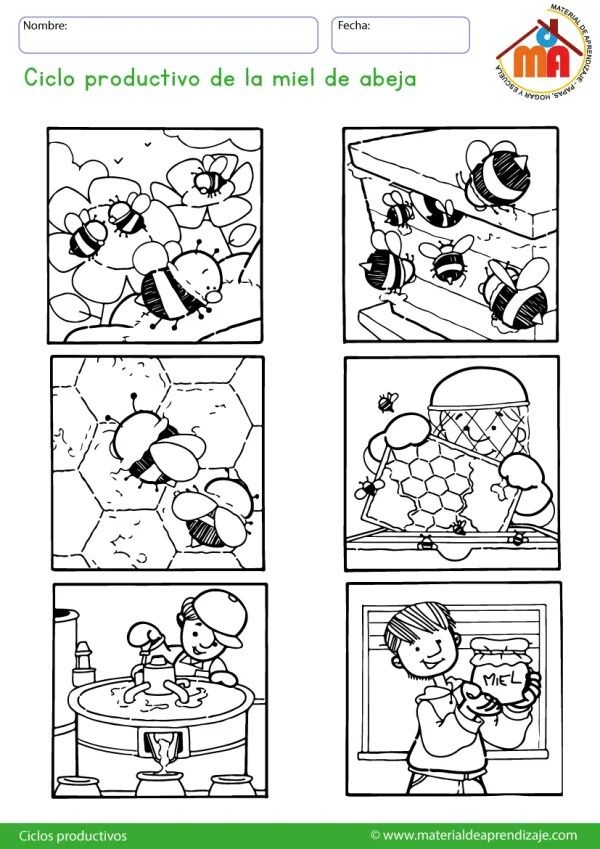 Pin By Cinthya Vera On Scuola Infanzia In 2020 Insects Theme Story Sequencing Bee Happy