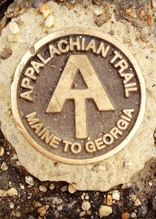 Hike the Appalachian trail!-just a section I did a day hike starting at Clingman's Dome north in the 90's.