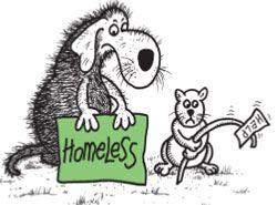 Cartoon of a homeless cat and dog