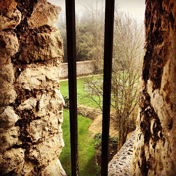 For beautiful views and scenic runs head to Farnham Castle...