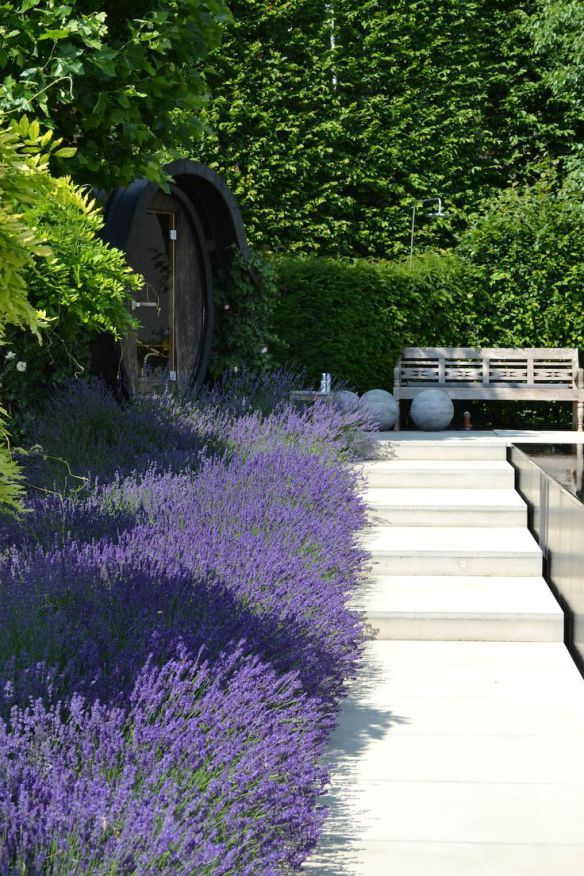 Lavender has always been one of my favourites and looks it's best in abundance...